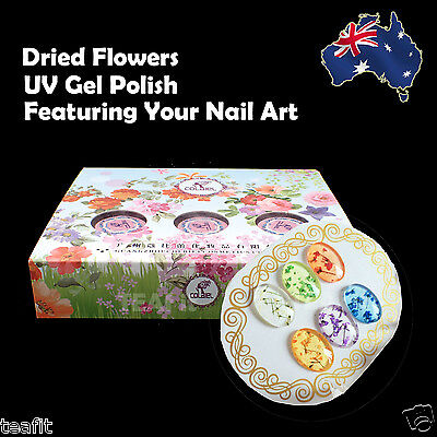 Dried Flowers Pattern Nail Art UV LED Soak Off Soakoff Gel Nail Polish Manicure