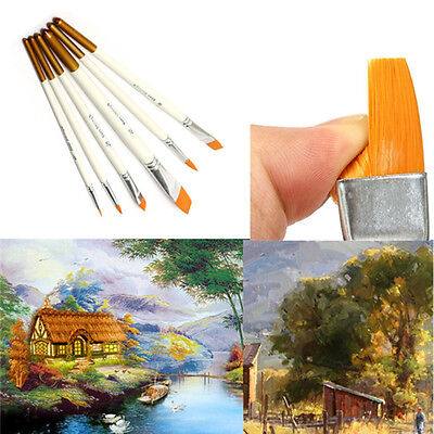 6 PCS Professional Acrylic Drawing Set Oil Watercolor Artist Paint Brushes