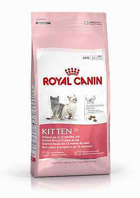 Royal Canin Kitten 36 Gatto Conf. Da 10Kg.