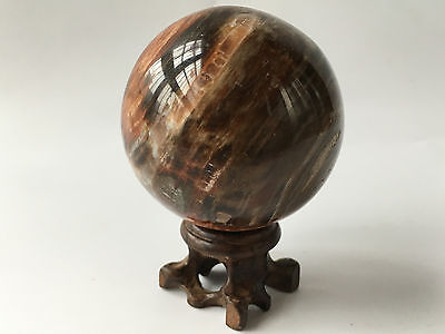 PETRIFIED WOOD FOSSIL AGATE SPHERE Crystal w/Wood Stand