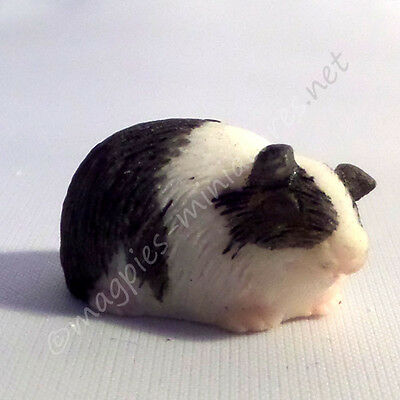 Dolls House 12th scale Guinea Pig - i