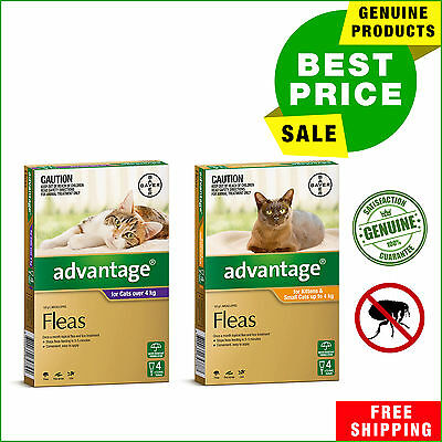 Advantage Flea Treatment for Cats All Sizes 4 Pipettes AU Shop