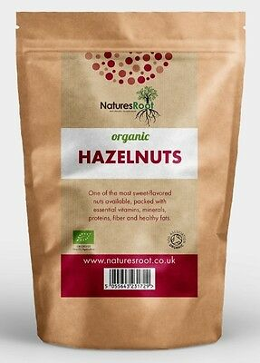 Organic Raw Whole Hazelnuts - Ready to Eat & Best Premium Quality - ALL SIZES