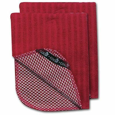 (2) Red Cotton Terry Scrubber Mesh Country Kitchen Dish Cloths