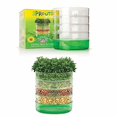 Kitchen Seed Sprouter - Great for Sprouts & Micro greens + Free Seeds