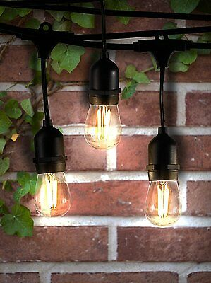 Hyperikon Outdoor Commercial String Light, String Only, 48ft with 15 Dropped -