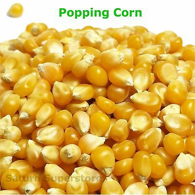 POPPING CORN Popcorn Kernels Maize seeds Sealed Pack