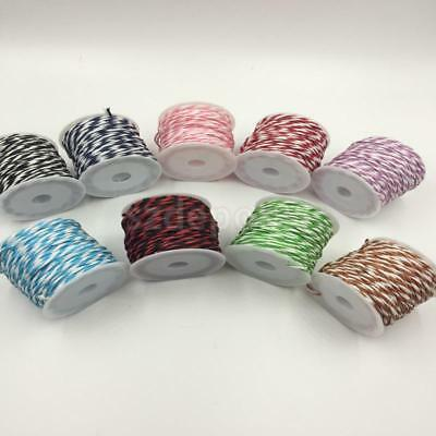 Paper Rope Ribbon Twine String Wrap Gift Package 10M/Roll