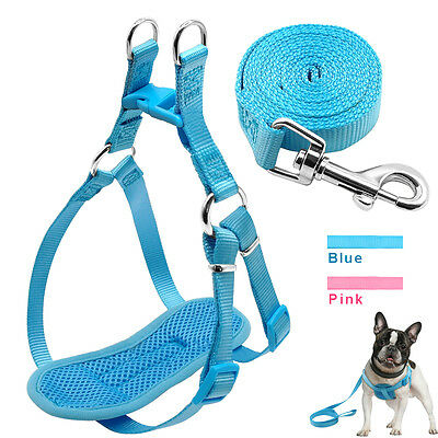 Step In Chest Plate Puppy Small Pet Dog Harness and Leash Set Soft Mesh Padded