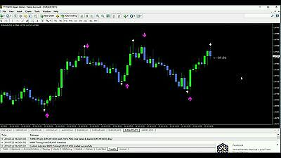binary options turbo plus+ forex trading indicator