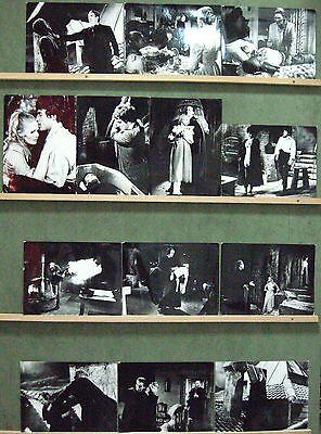 F15925 DRACULA HAS RISEN FROM THE GRAVE LEE HAMMER 13 SPANISH 7X9 b/w photo Set