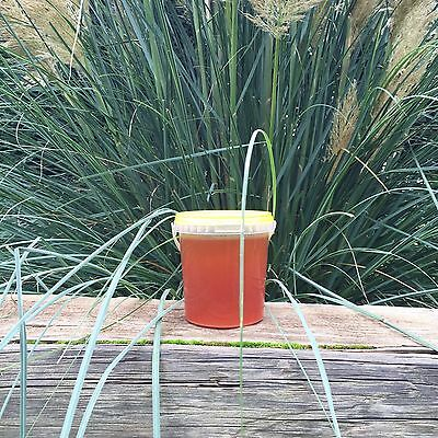 PURE RAW ORGANIC HONEY 1 KG ( harvest summer 2016)