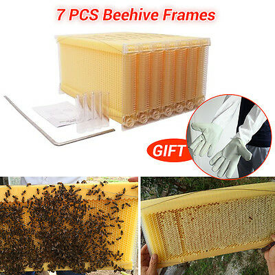 7Pcs 2-Generation Upgraded Beehive Frames Kit Beekeeping Automatic Flow Honey