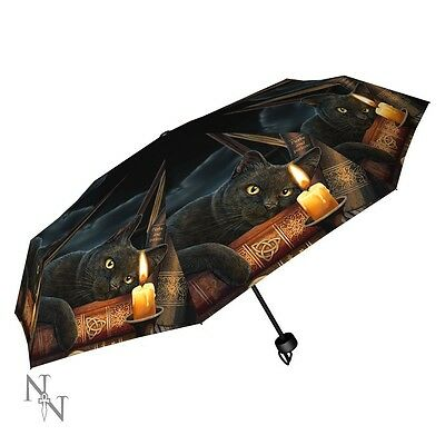 NEW Cat Design Umbrella from LISA PARKER  WITCHING HOUR