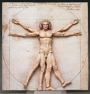 Vitruvian Man The Table Museum Freeing Action Figure Figma SP056