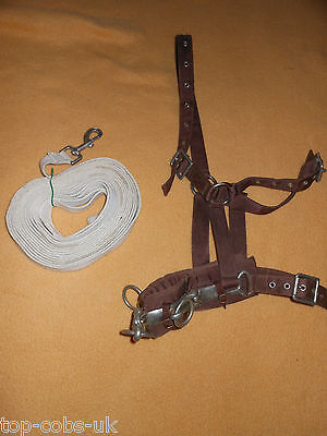 Pony Size Lunge Cavesson & Lunge Line 4 Bridle Fast Postage Saddle Ry