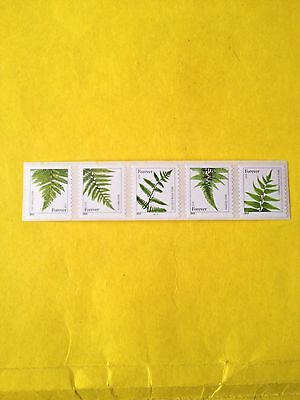 US Scott #4973-77 Ferns 2014 Date Set of 5 Individual Forever Stamps.