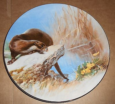 Royal Worcester Fine China Otter Design Plate