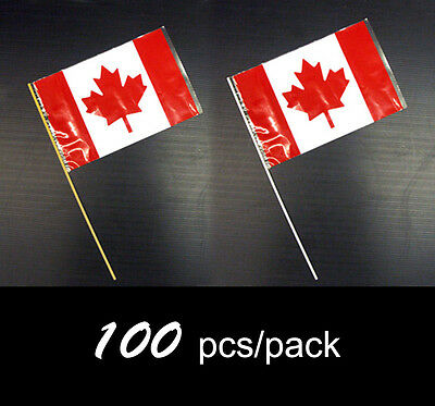6x9in Canadian Waving Flag with Staff (SF100)