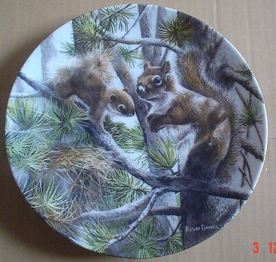 Knowles Collectors Plate THE SQUIRREL From FRIENDS OF THE FOREST