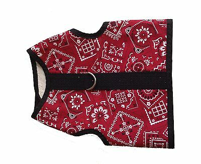 Kitty Holster Cat Harness Red Bandana S/M with Training Pamphlet