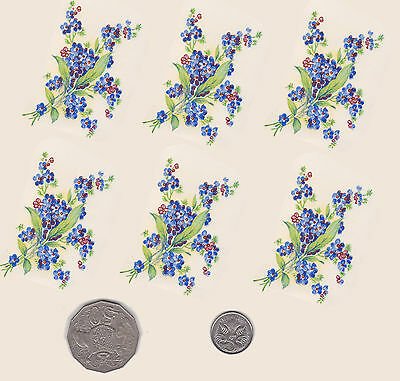 """6  x Waterslide ceramic decals Decoupage Forget-me-nots .2 1/2"""" x 1 1/2""""  PD636"""