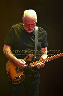 David Gilmour Photo 8x12 or 8x10 inch 2016 MSG NYC, NY Rattle That Lock Tour 43