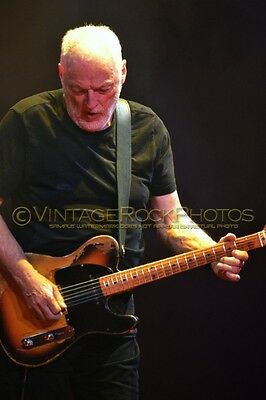 David Gilmour Photo 8x12 or 8x10 inch 2016 MSG NYC, NY Rattle That Lock Tour 86