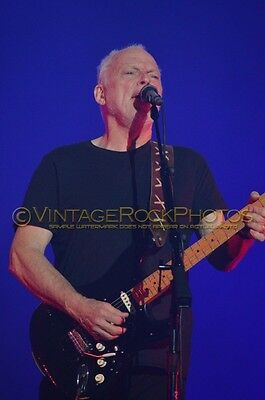 David Gilmour Photo 8x12 or 8x10 inch 2016 MSG NYC, NY Rattle That Lock Tour 105