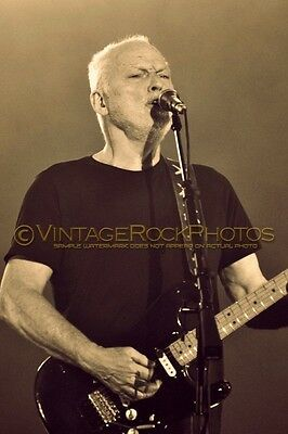 David Gilmour Photo 8x12 or 8x10 inch 2016 MSG NYC NY Rattle That Lock Tour 109s