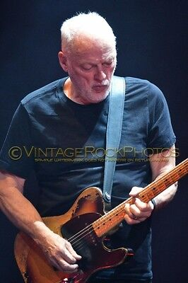 David Gilmour Photo 8x12 or 8x10 inch 2016 MSG NYC NY Rattle That Lock Tour 153
