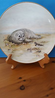 Decorative Plate with hand painted Baby Seal