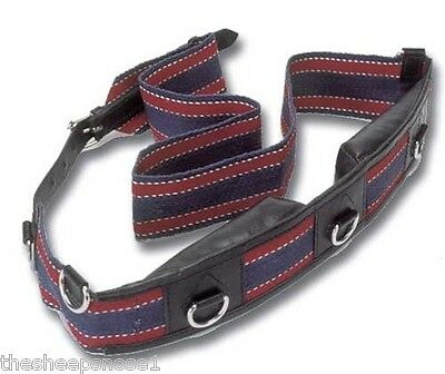 Windsor Equestrian Webbing Training Lunging Roller Pony, Cob Or Full Size