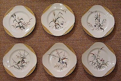 Antique Haviland & Co. Limoges Hand Painted Plates Flowers Gold Encrusted Set/6