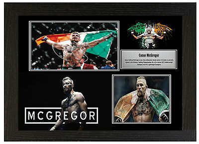 Conor Mcgregor Ufc - A3 Signed Framed Collectors Display Picture