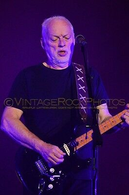 David Gilmour Photo 8x12 or 8x10 inch 2016 MSG NYC, NY Rattle That Lock Tour 35