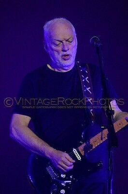 David Gilmour Photo 8x12 or 8x10 inch 2016 MSG NYC, NY Rattle That Lock Tour 37
