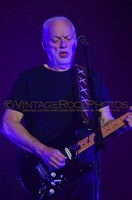 David Gilmour Photo 8x12 or 8x10 inch 2016 MSG NYC, NY Rattle That Lock Tour 39