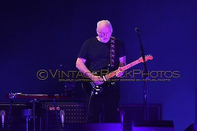 David Gilmour Photo 8x12 or 8x10 inch 2016 MSG NYC, NY Rattle That Lock Tour 48