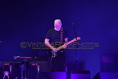 David Gilmour Photo 8x12 or 8x10 inch 2016 MSG NYC, NY Rattle That Lock Tour 52