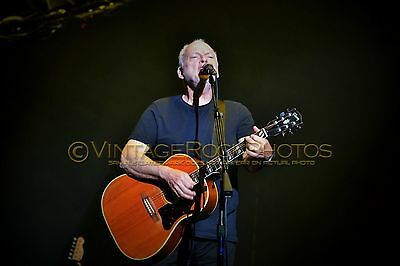 David Gilmour Photo 8x12 or 8x10 inch 2016 MSG NYC, NY Rattle That Lock Tour 89