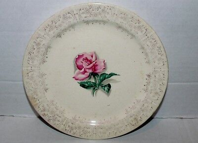 Vintage White & Gold Floral Taylor Smith & Taylor Saucer with Pink Rose Sauncer