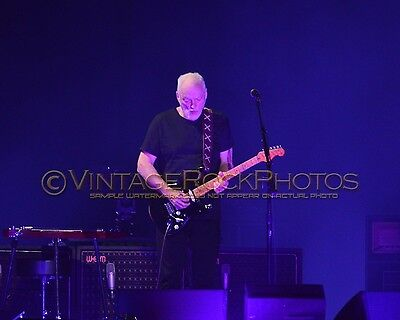 David Gilmour Photo 8x10 inch 2016 MSG NYC, NY Rattle That Lock Concert Tour 49