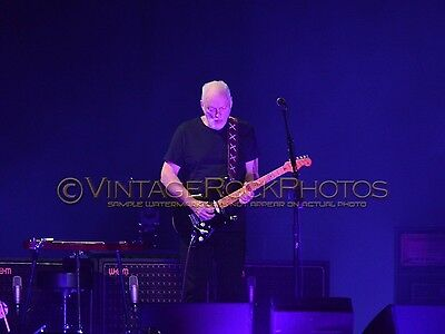 David Gilmour Photo 8x10 inch 2016 MSG NYC, NY Rattle That Lock Concert Tour 50