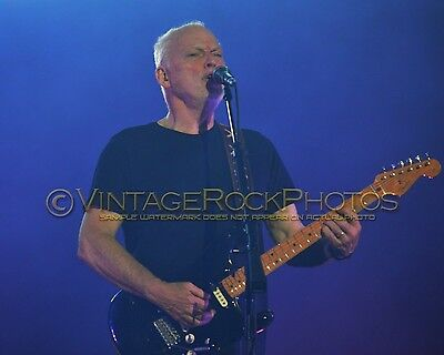 David Gilmour Photo 8x10 inch 2016 MSG NYC, NY Rattle That Lock Concert Tour 101