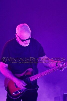 David Gilmour Photo 8x12 or 8x10 inch 2016 MSG NYC, NY Rattle That Lock Tour 6