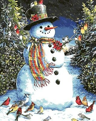 Framed Painting by Number kit Snowman Birdie Birds Christmas Winter DIY BB7669