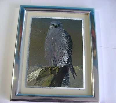 Vintage Metallic effect picture of a ?Hawk
