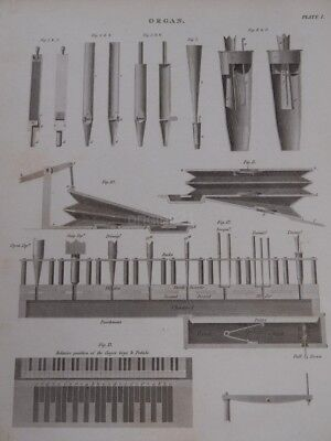 1820 GEORGIAN copper plate engraving . print ORGAN music instrument BRITISH Rees