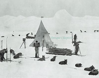 Captain Amundsen Expedition Camp Framheim 1912 Photo Article A592